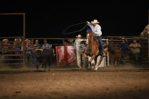 cowboy at rodeo with lasso